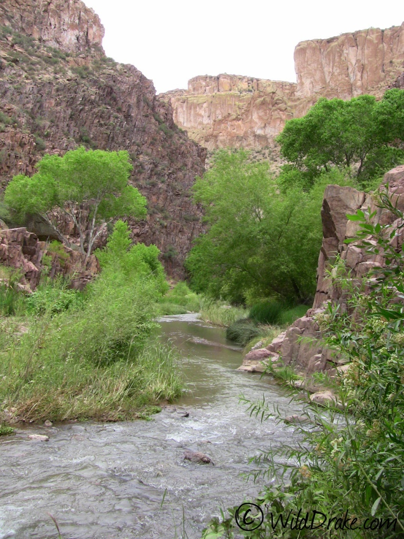 Aravaipa Canyon Wilderness – An Oasis In The Desert!